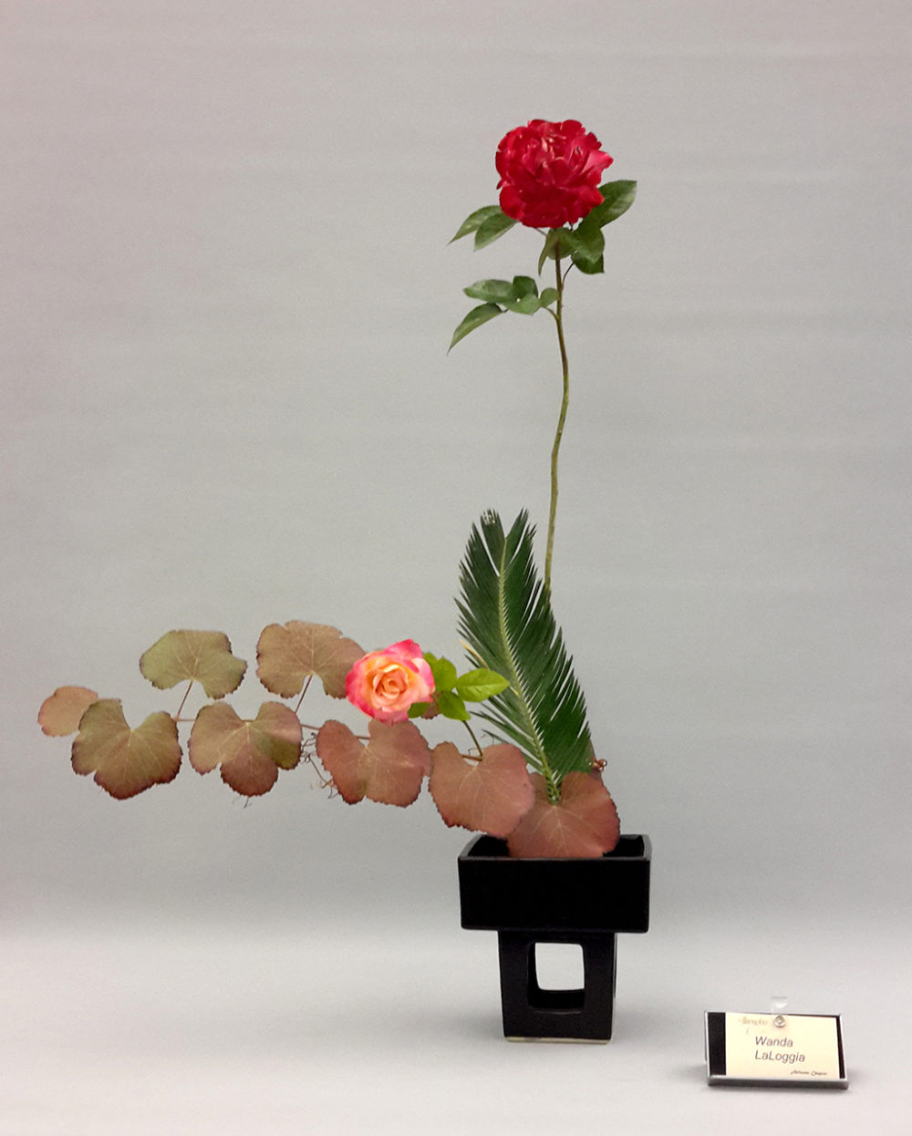 Rose Garden Workshop (Dec 16, 2017)